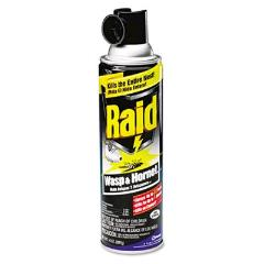 Rental store for Raid Wasp   Hornet Killer 14oz. in Aberdeen OH